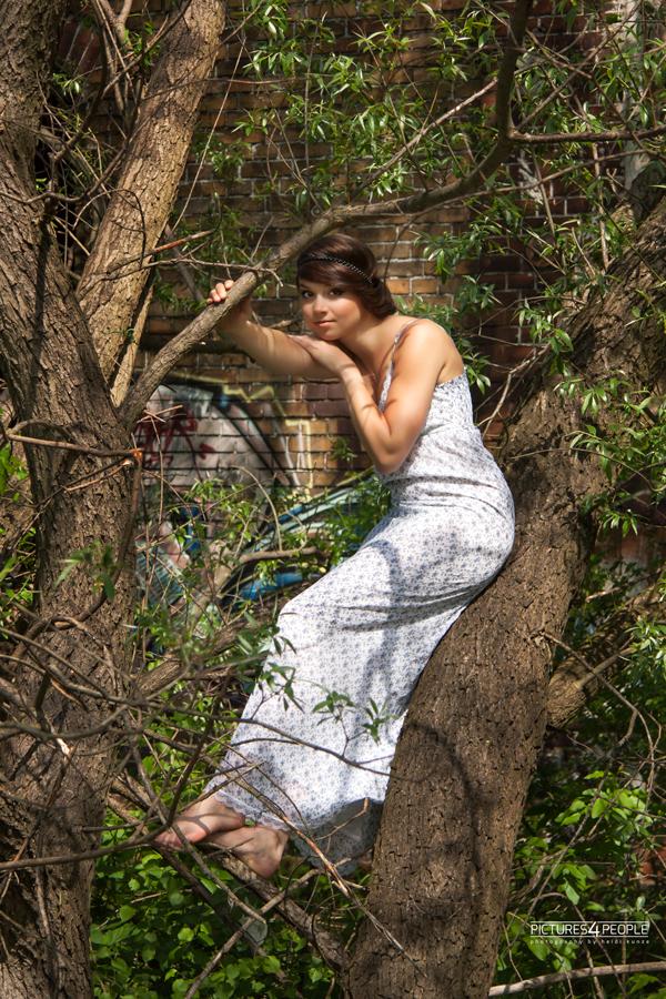 Mädchen in einem Baum