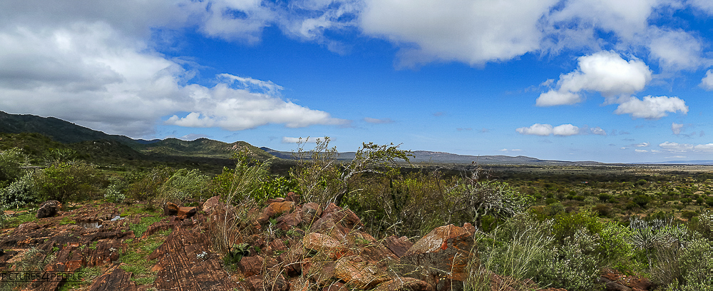 Landschaft in den Lolita Hills