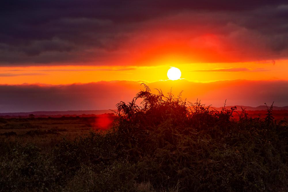 Sonnenaufgang im Amboseli
